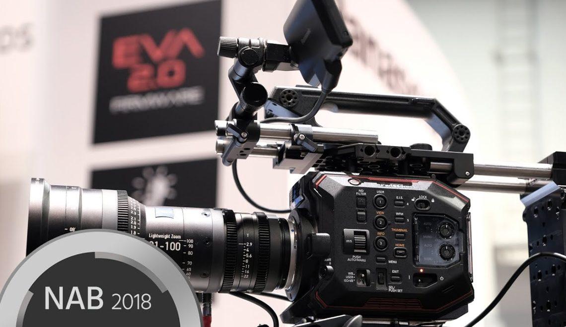 ראיון עם אנשי פנסוניק לגבי EVA1
