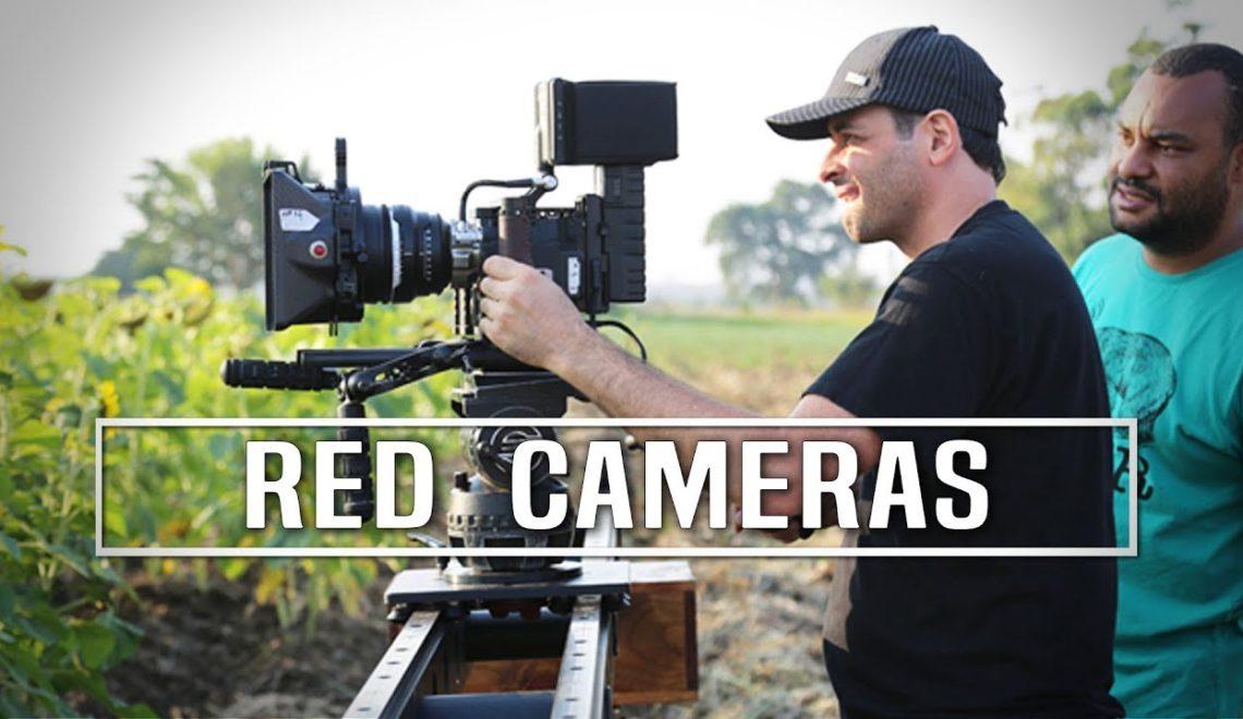 חוות דעת של עשרה מפיקים על מצלמות RED