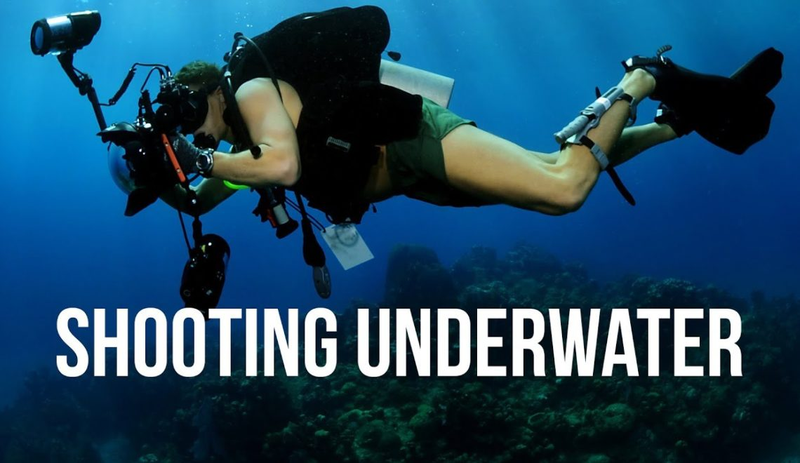שבעה טיפים בצילום מתחת למים